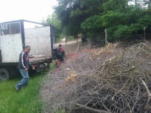 brush removal by Affordable Hauling